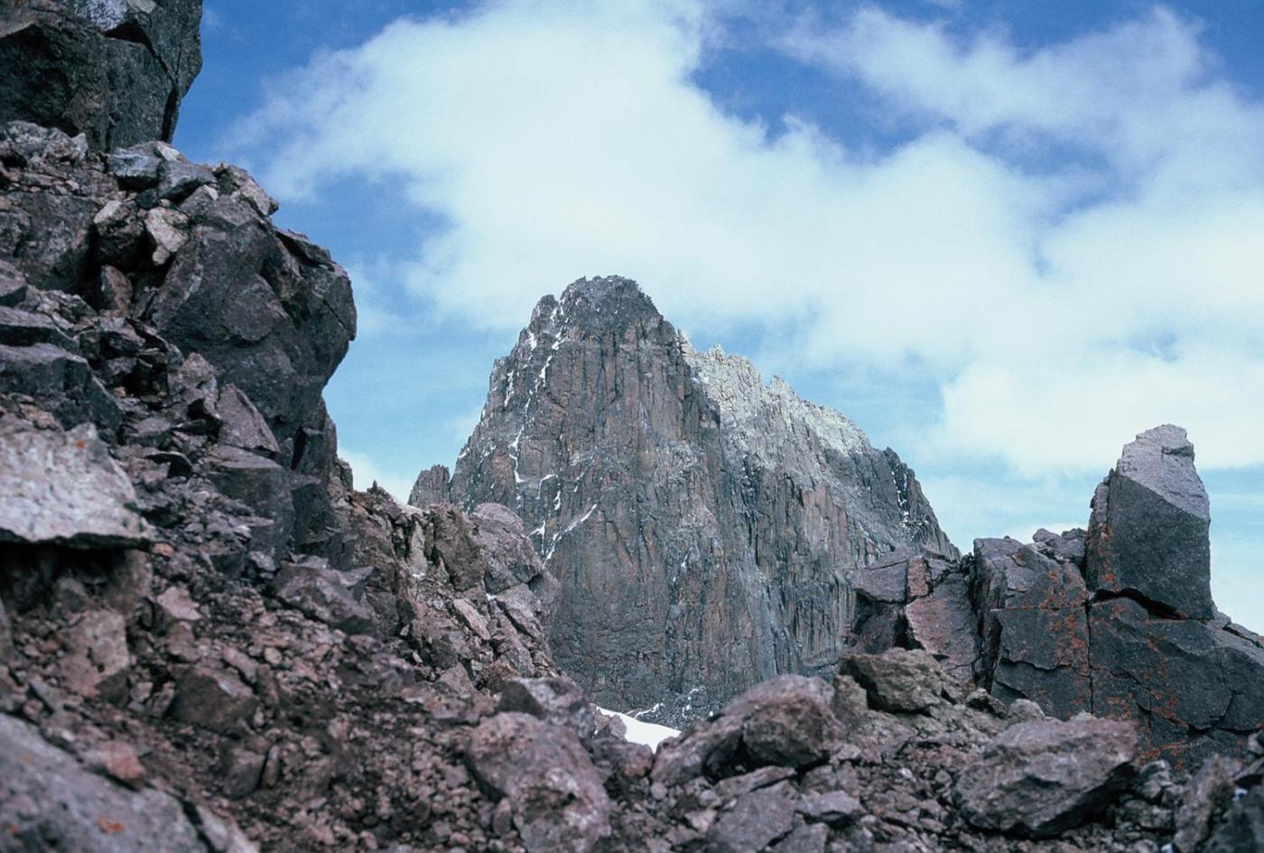 Majestic Mt. Kenya